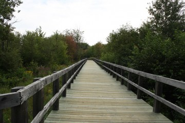 nashwaaksistrail-boardwalk-lookout20100816_15
