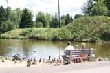 centennial-park-duck-pond-people20100822_47