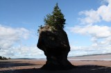 hopewell-rocks-flower-pots-more20100822_40