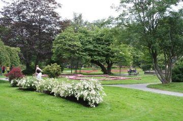 halifax-public-gardens-flowers20110729_88