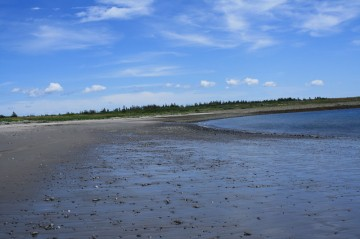 Pond Cove Beach and the Brier Island Nature Preserve