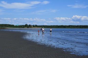 sand-dollar-beachlow-tide-beach-people20110725_26