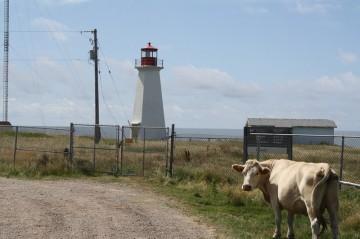 cheticamp-island-pointe-enragee20110806_91