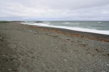 beach20110804_91