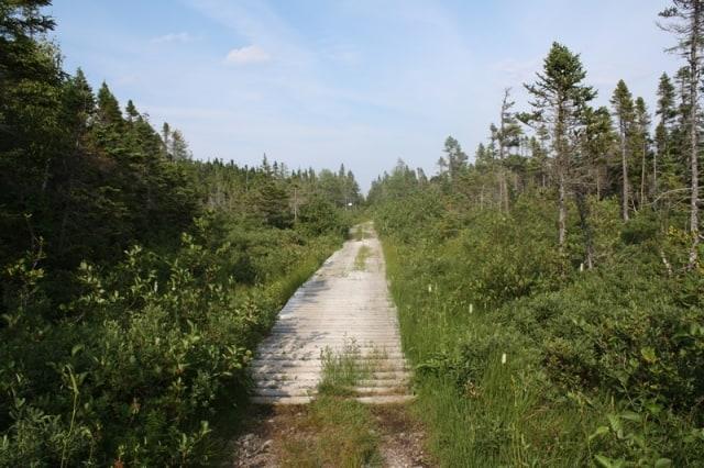 trail20110820_17