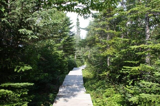 trail20110820_83