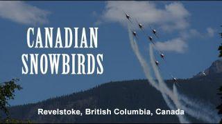 Snowbirds Airshow