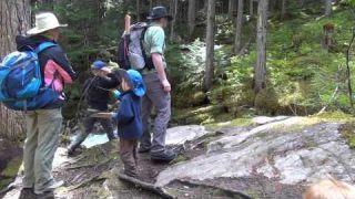 Begbie Falls Hike - Revelstoke