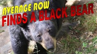 WILD BLACK BEARS IN CANADA WITH AVERAGE ROW VLOG 27