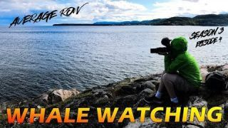 Tadoussac Quebec one of the best spots in Canada for Whale Watching on the St Lawrence and Saguenay