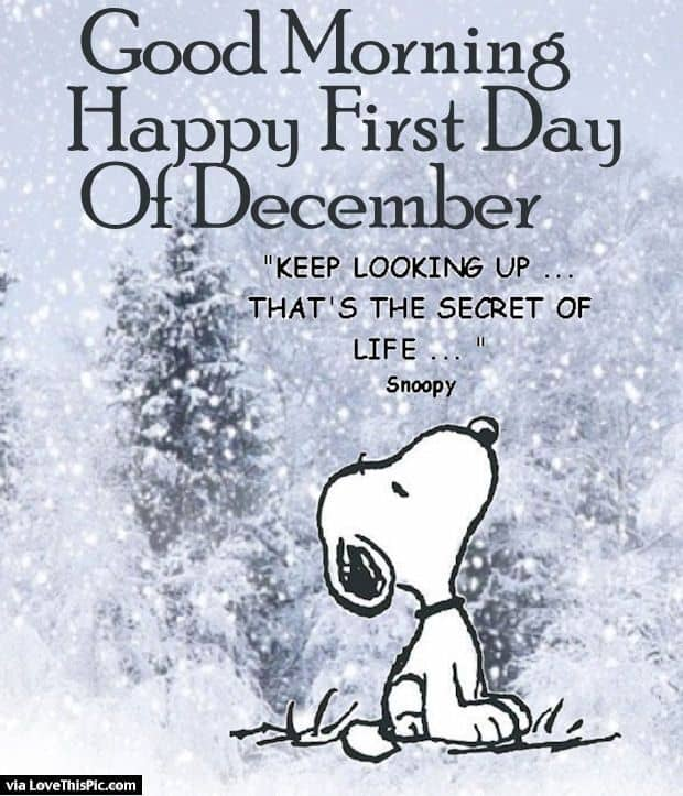 e429476453dd795dd3c5e41f1687799e--hello-december-quotes-happy-december