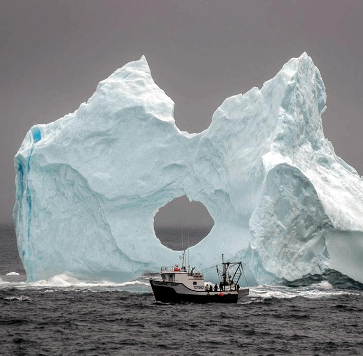 iceburg-newfoundland