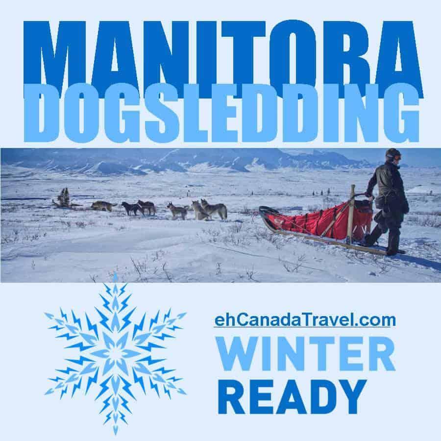 manitoba-dog-sledding