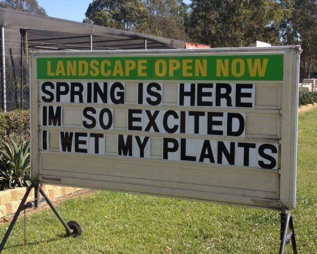 so-excited-i-wet-my-plants