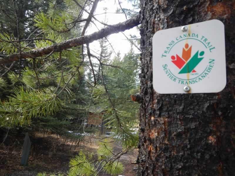 Alberta 2018-05-01 - Trans Canada Trail in Kananaskis, Alberta. Near Barrier Lake.