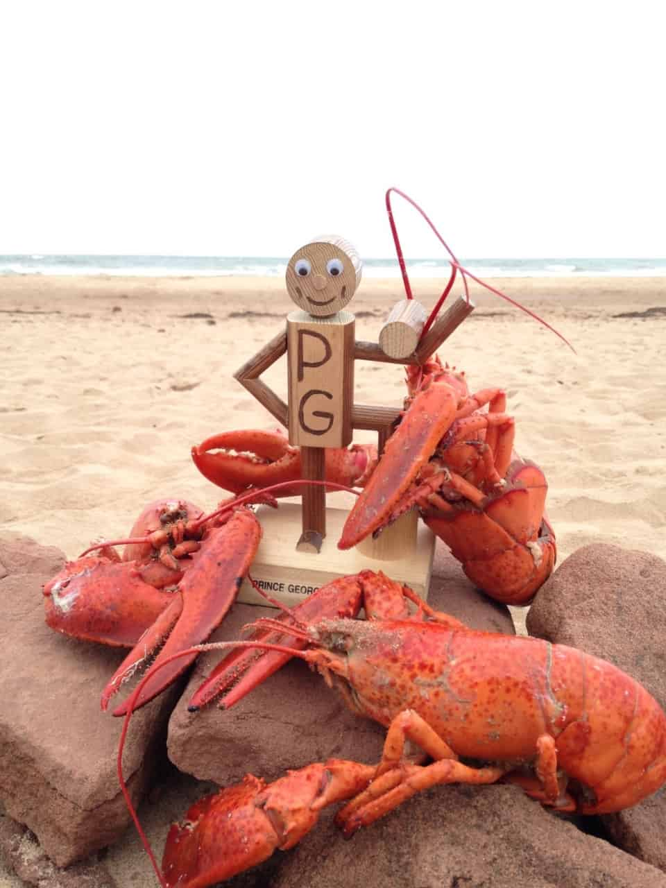 7921ba520b3b637983853d20.jpg - Hanging out with some friends on PEI beach