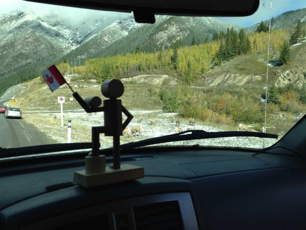 c2252bba6a530aea48d54277.jpg - Jasper parkway, AB - Calgary road trip fall 2014