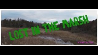 Lost in the Marsh