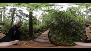 This is me on a boardwalk hike on hot spring cove island Tofino BC 4k 360 video