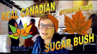 Thinking about visiting a Sugar Bush this Spring? What to Expect at a Real Canadian Sugar Bush