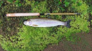 Stevens Lake Hike in Tenkara Fishing Trip