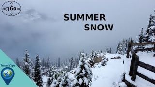 Summer Snow - The Snow Forest, Banff National Park - 360 Degree Extra Clips