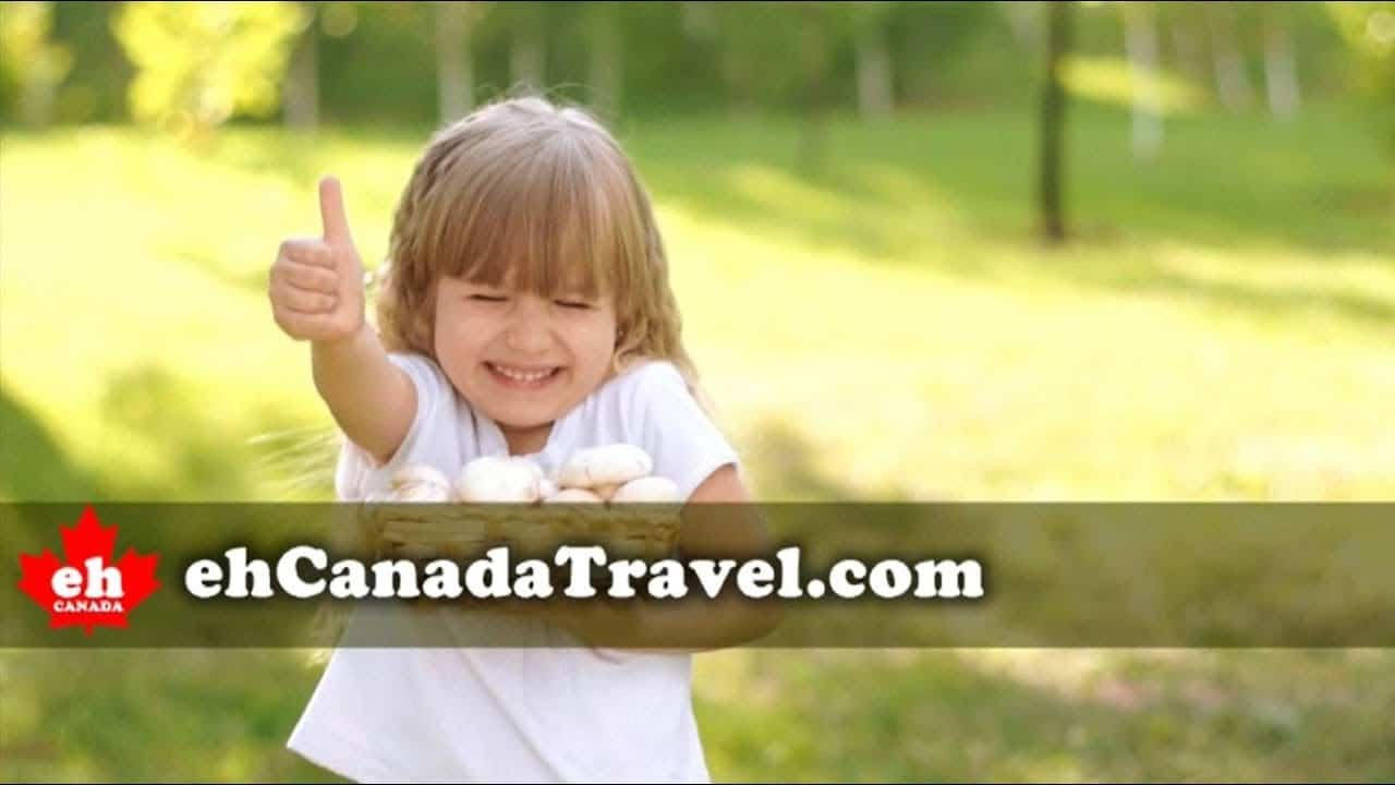 Spring is Here - Canada Travel